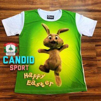 خرگوش 31001